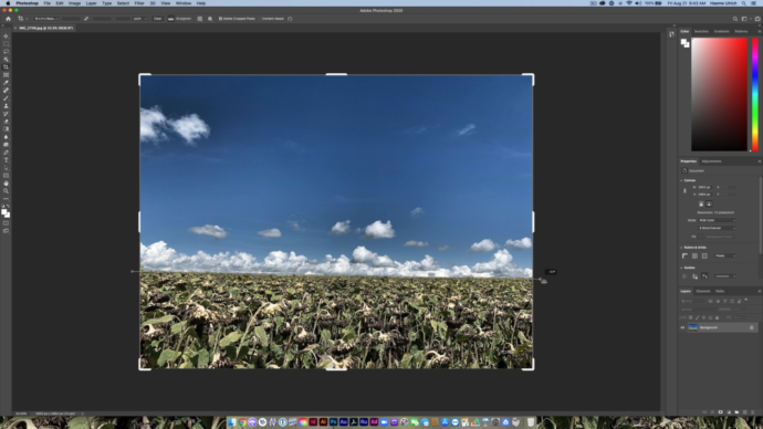 Horizont gerade richten in Photoshop